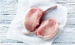 کشف گوشت خوک در کبابی بابلسر
