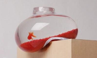 روش نجات ماهی قرمز عید از مرگ به همراه تصویر