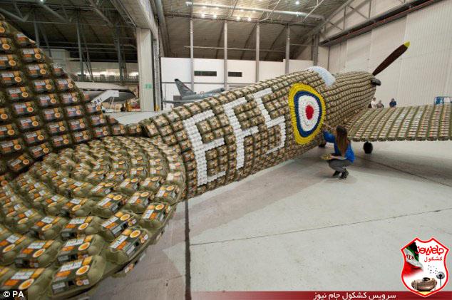 ساخت جنگنده با شانه تخم مرغ + عکس