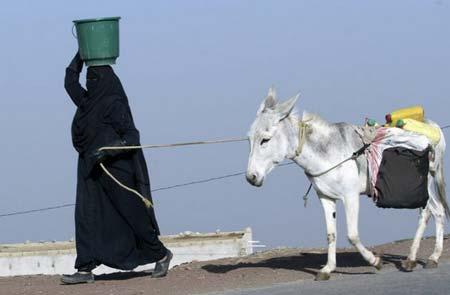 تصاویر ویژه روز   یکشنبه 22 اردیبهشت1392