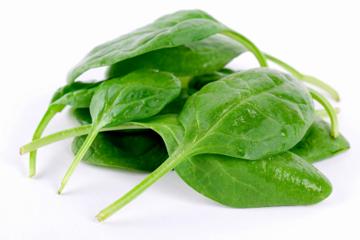 گیاهی مفید برای رفع کم خونی