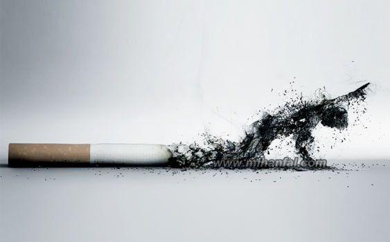 اس ام اس زیبا با طعم سیگار!
