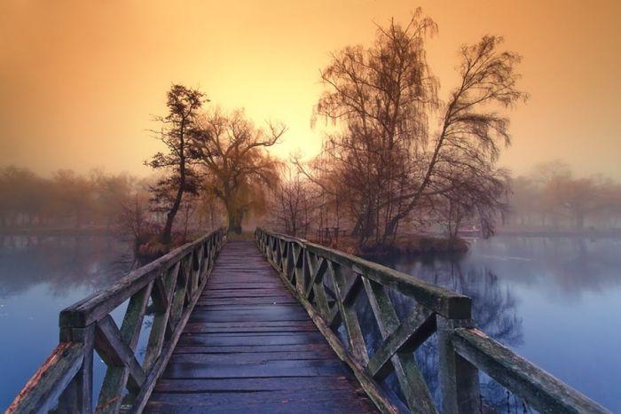 نقاشی های طبیعی +تصاویر