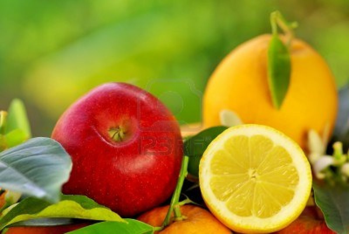 هسته این میوهها را نخورید