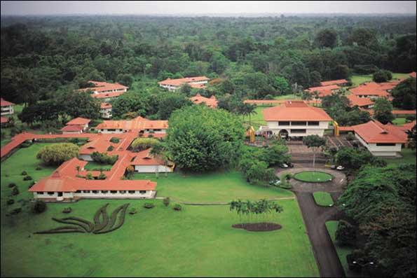سبزترین دانشگاه های دنیا +تصاویر
