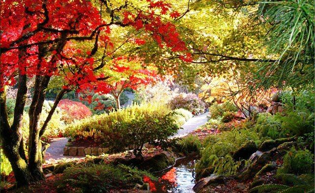 بزرگترین باغ گل دنیا +تصاویر