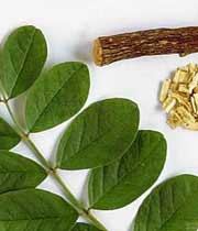 گیاهان شفابخش برای تنظیم دستگاه گوارش