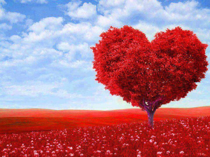 7 ترانه زیبا و عاشقانه