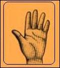 شخصیت شناسی از روی انگشت شست
