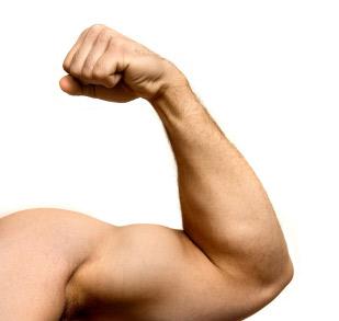5 ماده غذایی مفید برای افزایش قدرت عضلات