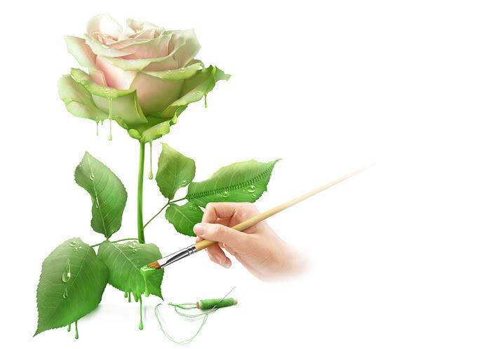 این گل تقدیم به شما!