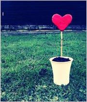 عشق در نگاه دوم!