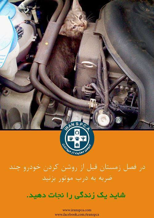 شاید یک زندگی را نجات دهید !!!