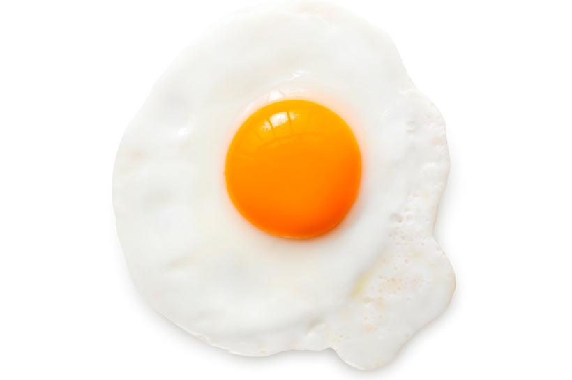 چرا باید تخم مرغ بخوریم؟