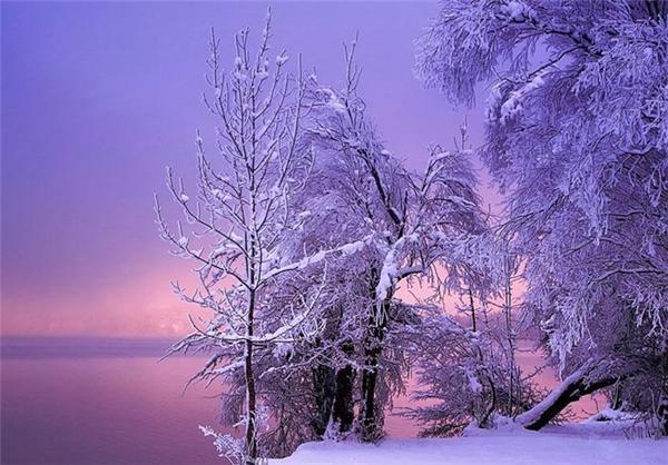 دیدن این تصاویر فوق العاده زیبا را از دست ندهید!