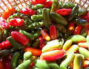 فواید و مضرات غذاهای تند