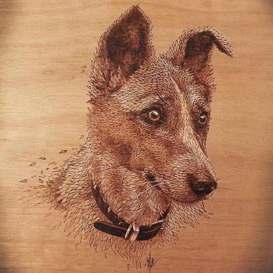 نقاشی هایی با چوب و لحیم +تصاویر