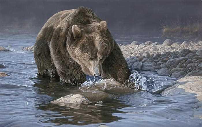 نقاشی های بسیار زیبا از حیوانات