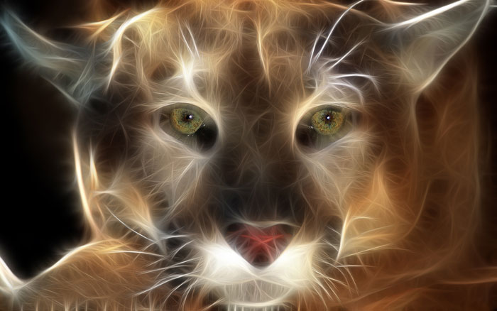 تصاویر شگفت انگیر 3 بعدی از حیوانات