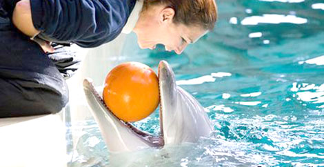 دوستی انسان با دلفینها+تصاویر