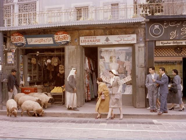 تصاویر برگزیده سال ۹۲ (6)