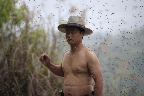 500 هزار زنبور روی بدن این مرد! +تصاویر