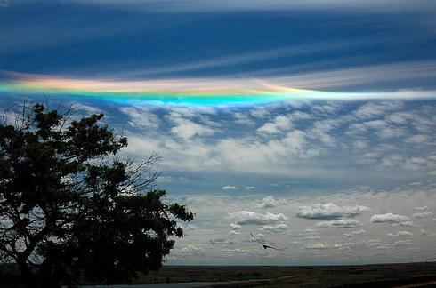 باورنکردنیترین پدیدههای طبیعی /تصاویر