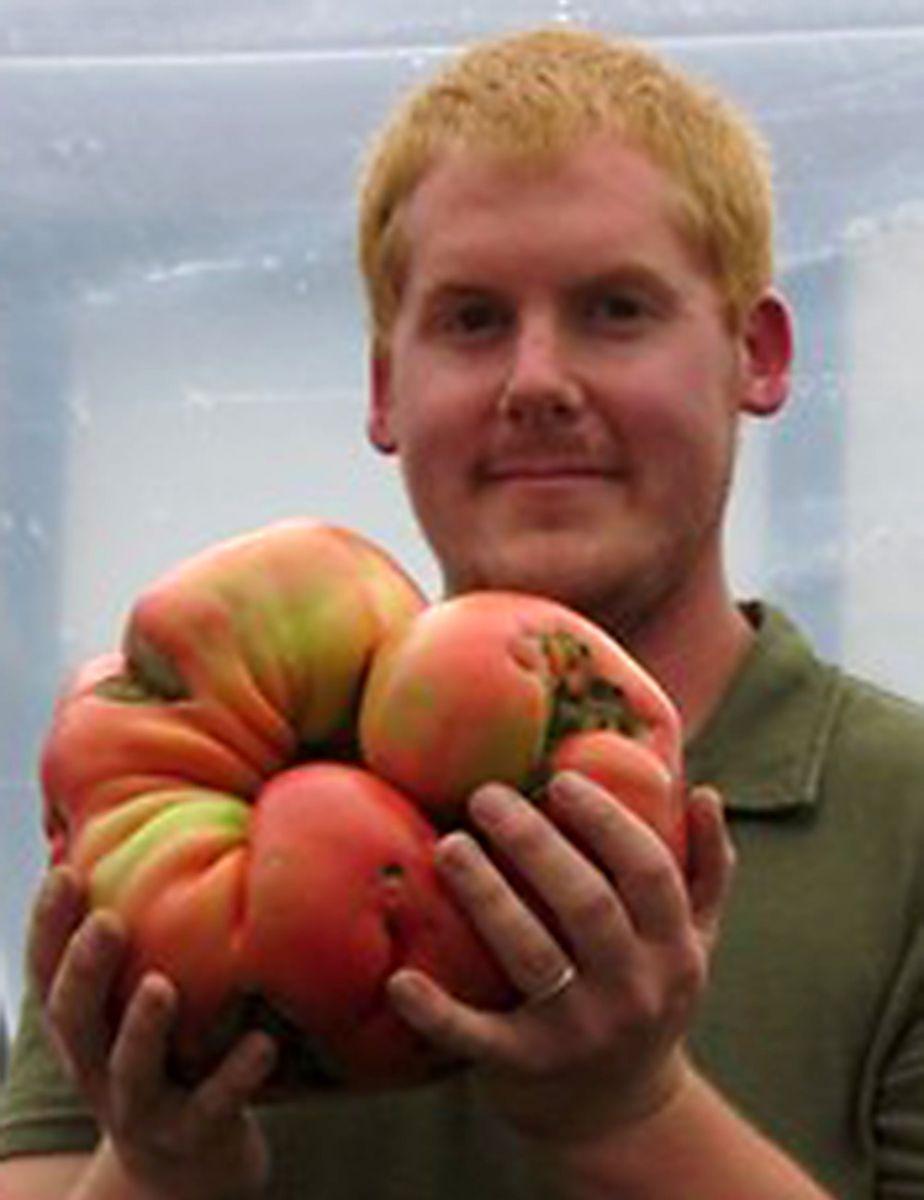 بزرگترین گوجه فرنگی دنیا + تصویر