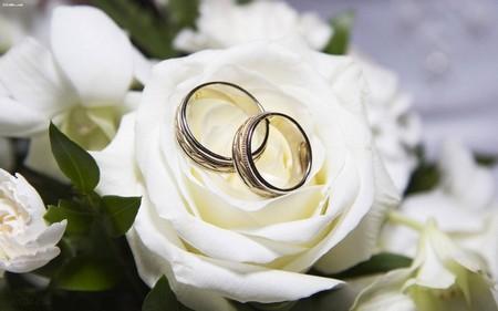 با عروس های کم طاقت و نامزدهای بی اعتماد چه کنیم؟