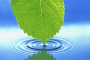 فواید شگفت انگیز آب برای بدن