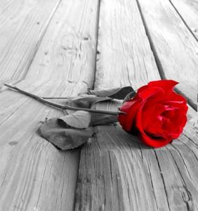 زندگی بدون روابط عاشقانه