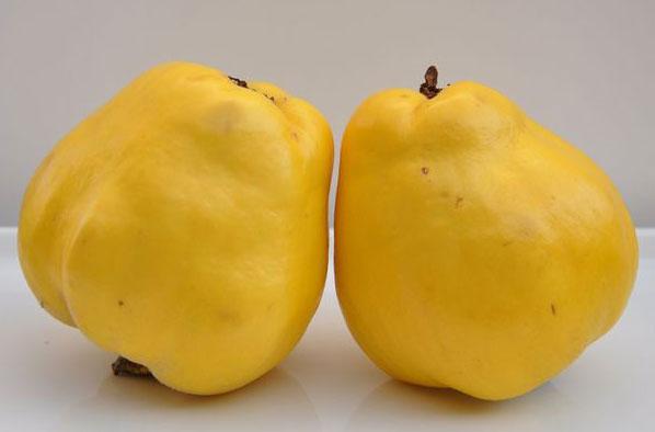 این میوه مژه ها را پرپشت می کند!