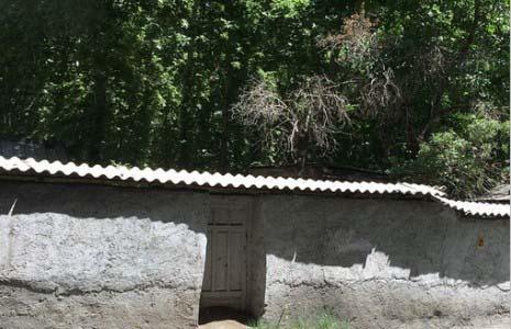 افسوس نیکی کریمی برای باغ شمیران + عکس