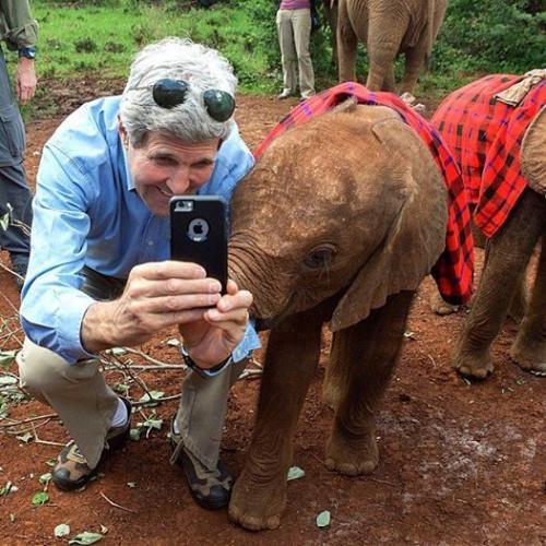 عکس سلفی جان کری با بچه فیل