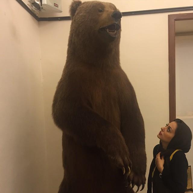 نفیسه روشن و خرسش + عکس