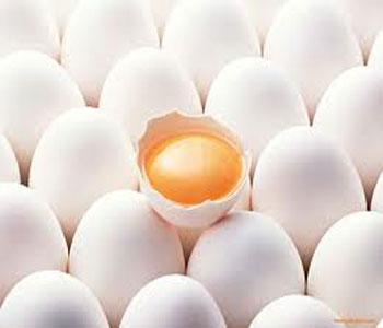 چگونه تخم مرغ سالم را تشخیص دهیم؟