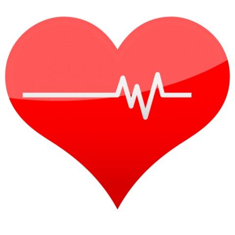 حقایقی در مورد ضربان قلب مهین فال