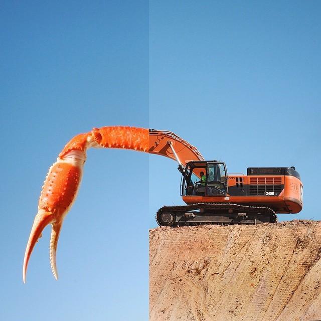 تصاویری دیدنی از ترکیب دو عکس