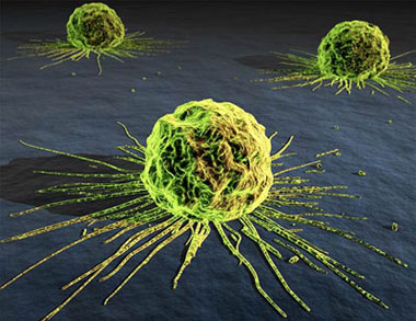 اطلاعات جالب در مورد سرطان