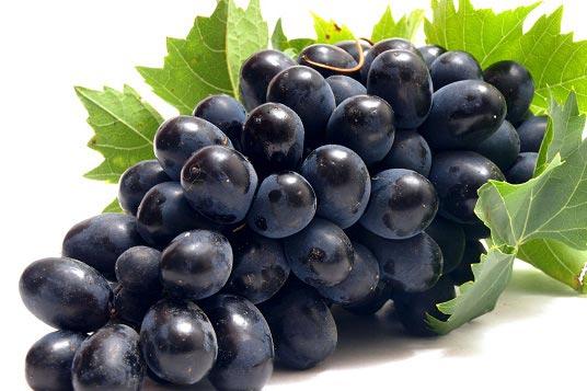 درمان بیماری ها با مصرف انگور سیاه