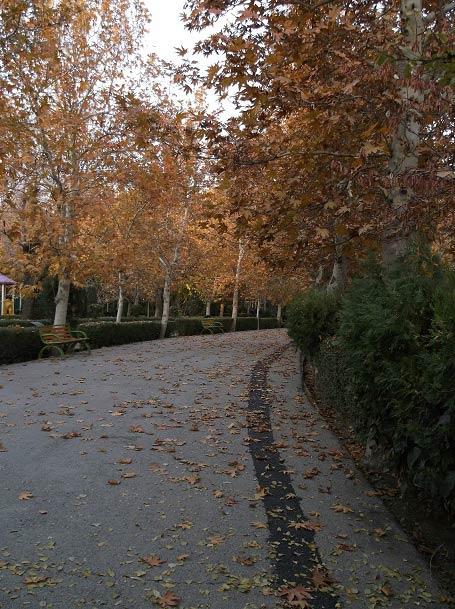 عکس بسیار زیبا از پاییز در پارک لاله تهران