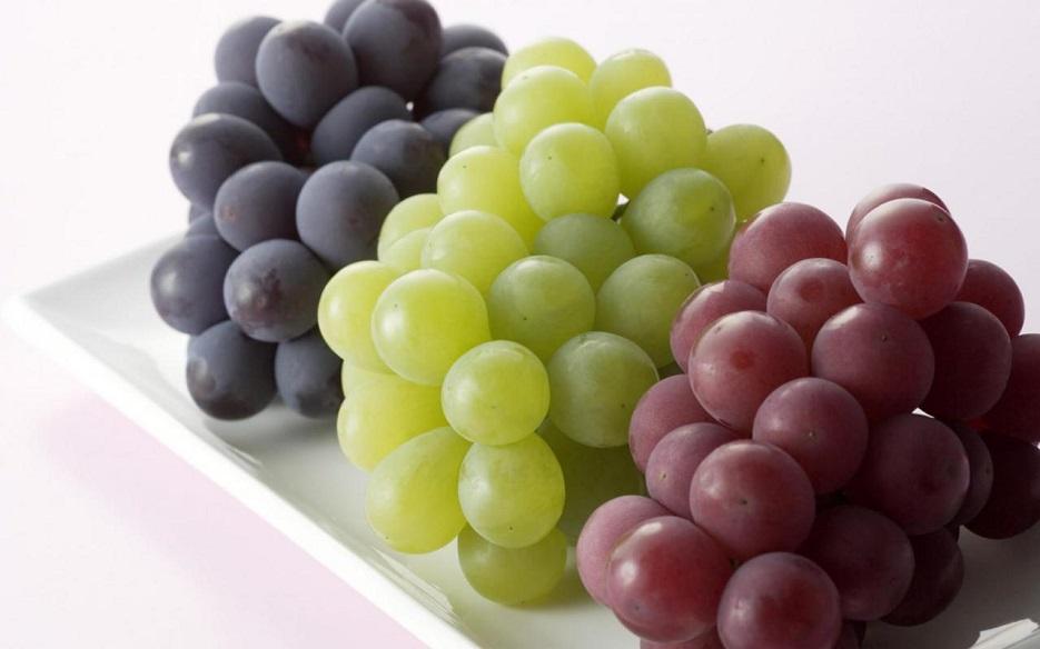 با خوردن این میوه کلیه خود را درمان کنید