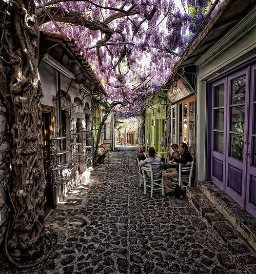 زیباترین پیاده روهای جهان! / تصاویر