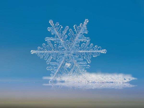 تصاویر جالب و دیدنی دانه های برف زیر میکروسکوپ