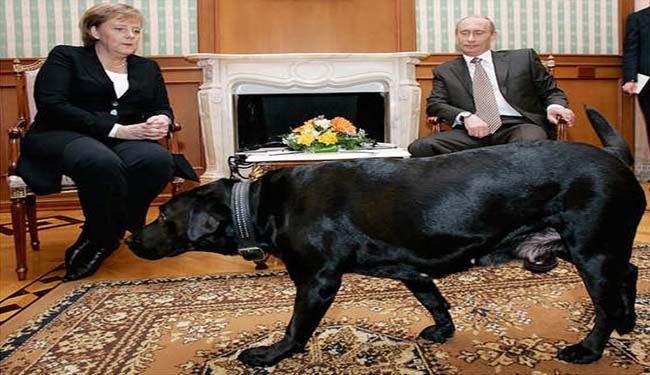 تصاویر سگ سیاه پوتین در دیدار صدراعظم المان