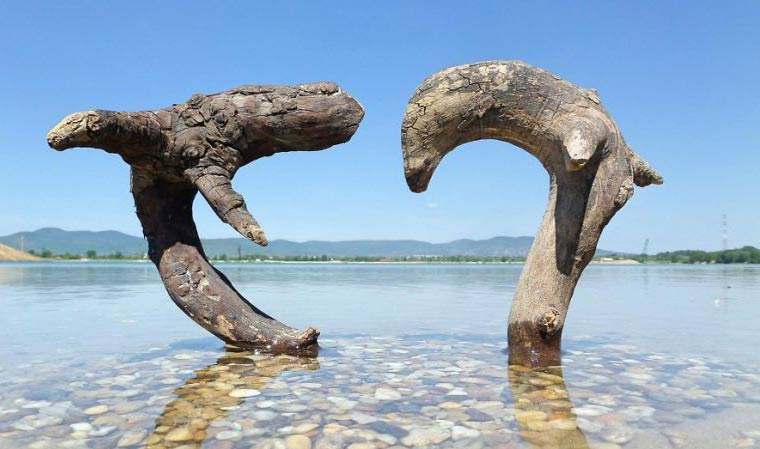 مجسمه های جالب و دیدنی از سنگ و چوب + تصاویر