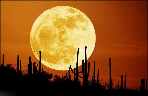 قبله ی کره ماه کجاست؟