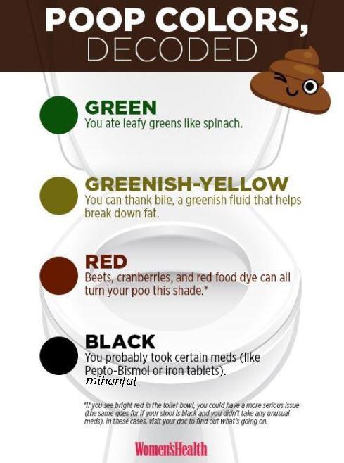 رنگ مدفوع شما درباره سلامت شما چه می گوید؟