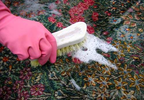 نکاتی برای تمیز کردن فرش و موکت