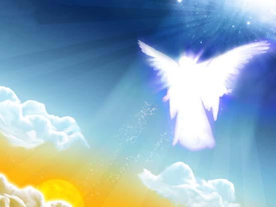 عجایبی که حضرت جبرئیل از عرش برای پیامبر (ص) تعریف کرد